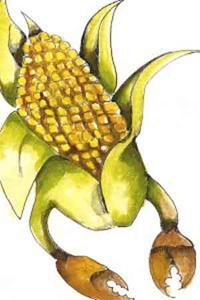 OGM: rischi e benefici