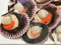 Canestrelli molluschi