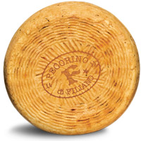 Pecorino Filiano