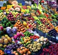 Frutta for Mapo frutto