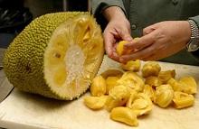 Jackfruit Giaca