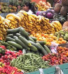 Agricoltura e alimentazione biologica